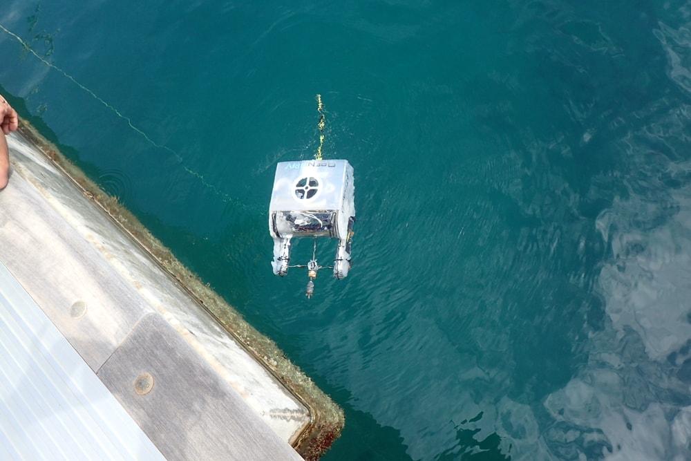 """Open ROV """"Stinger"""""""
