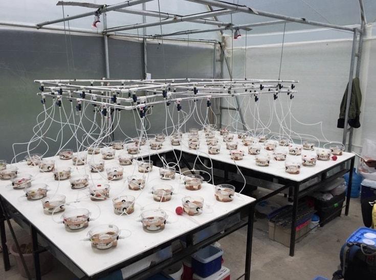 Laboratório de águas doces – MARE-UCoimbra