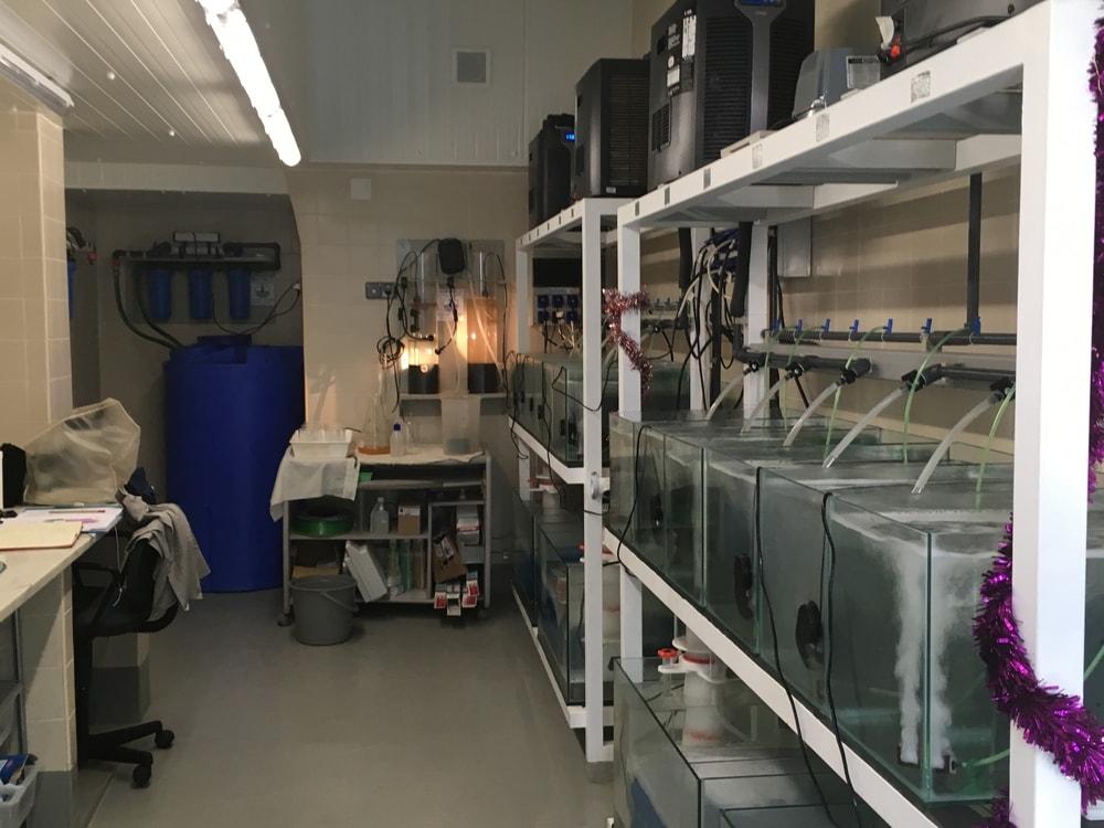 Aqualab - CIEMAR