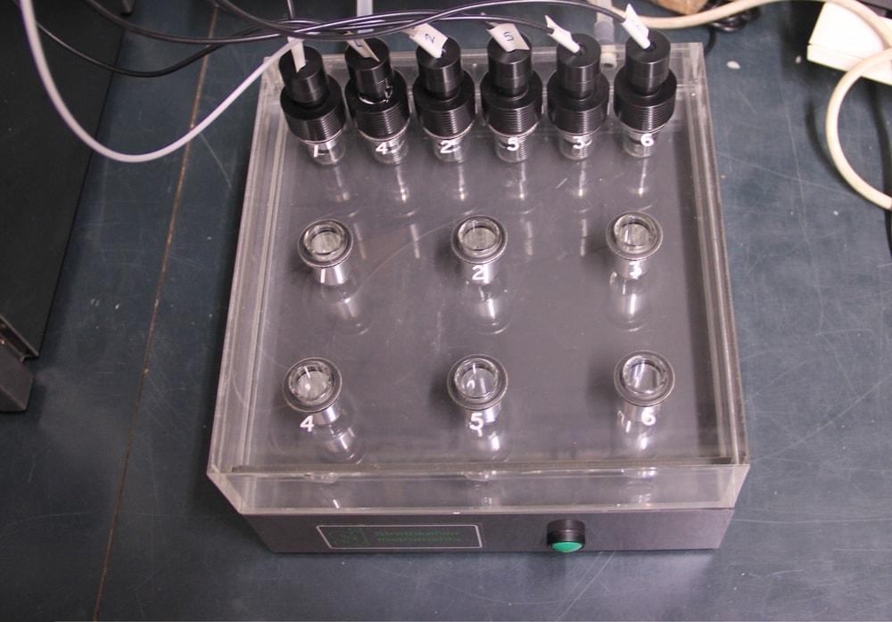 Equipamento de laboratório – Câmaras para medir metabolismos  – MARE-UCoimbra