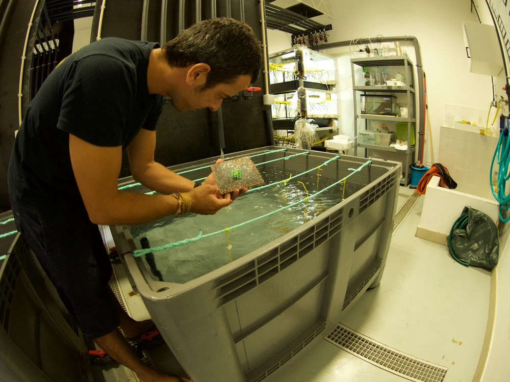 Equipamento de laboratório – Sistema de Mesocosmos MOSS (Marine Organism Stress Simulator) – MARE-Madeira